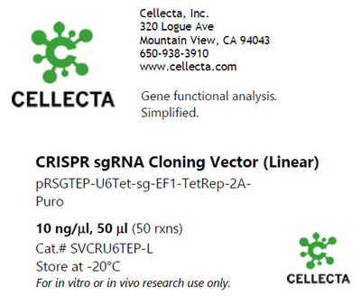 CRISPR sgRNA Lentiviral Vector with Tet-Inducible U6 Promoter (linearized, ready-for-cloning)