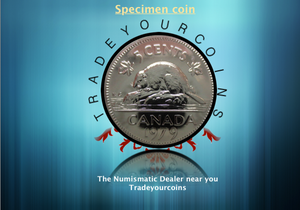 1979 Canada Five Cents Specimen Nickel Beaver