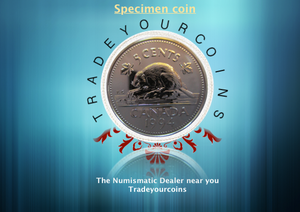 1994 Canada Five Cents Specimen Nickel Beaver