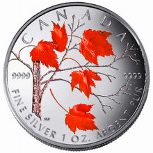 2004 Silver maple Leaf with Color-Winter