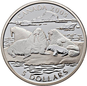 2005 Canada Fine Silver Five Dollars Coin-Canadian Wildlife Series-White-The Atlantic Walrus and Calf