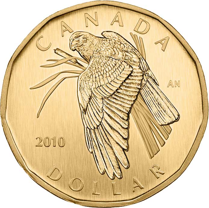 2010 Canada Specimen  Loonie Dollar- Northern Harrier