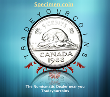 1988 Canada Five Cents Specimen Nickel Beaver