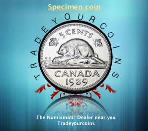 1989 Canada Five Cents Specimen Nickel Beaver