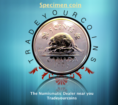 1995 Canada Five Cents Specimen Nickel Beaver