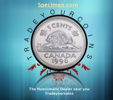1996 Canada Five Cents Specimen Nickel Beaver