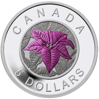 2014 Canada Fine Silver and Niobium Five Dollars Coin -Poinsettia