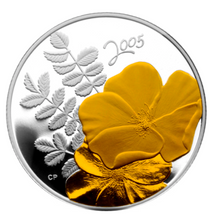 2005 Fifty Cents- Golden Rose