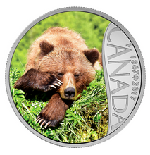 2017 $10 Celebrating Canada's 150th Coin Series: Grizzly Bear