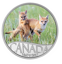 2017 $10 Celebrating Canada's 150th Coin Series - Wild Swift Fox and Pups