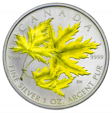 2006 Silver maple Leaf with Color-Silver Maple