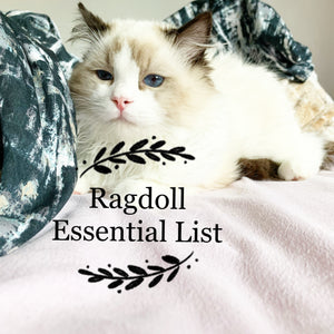 The best Ragdoll Essential Products in the UK- Cherish Lewis Ragdoll Cattery UK