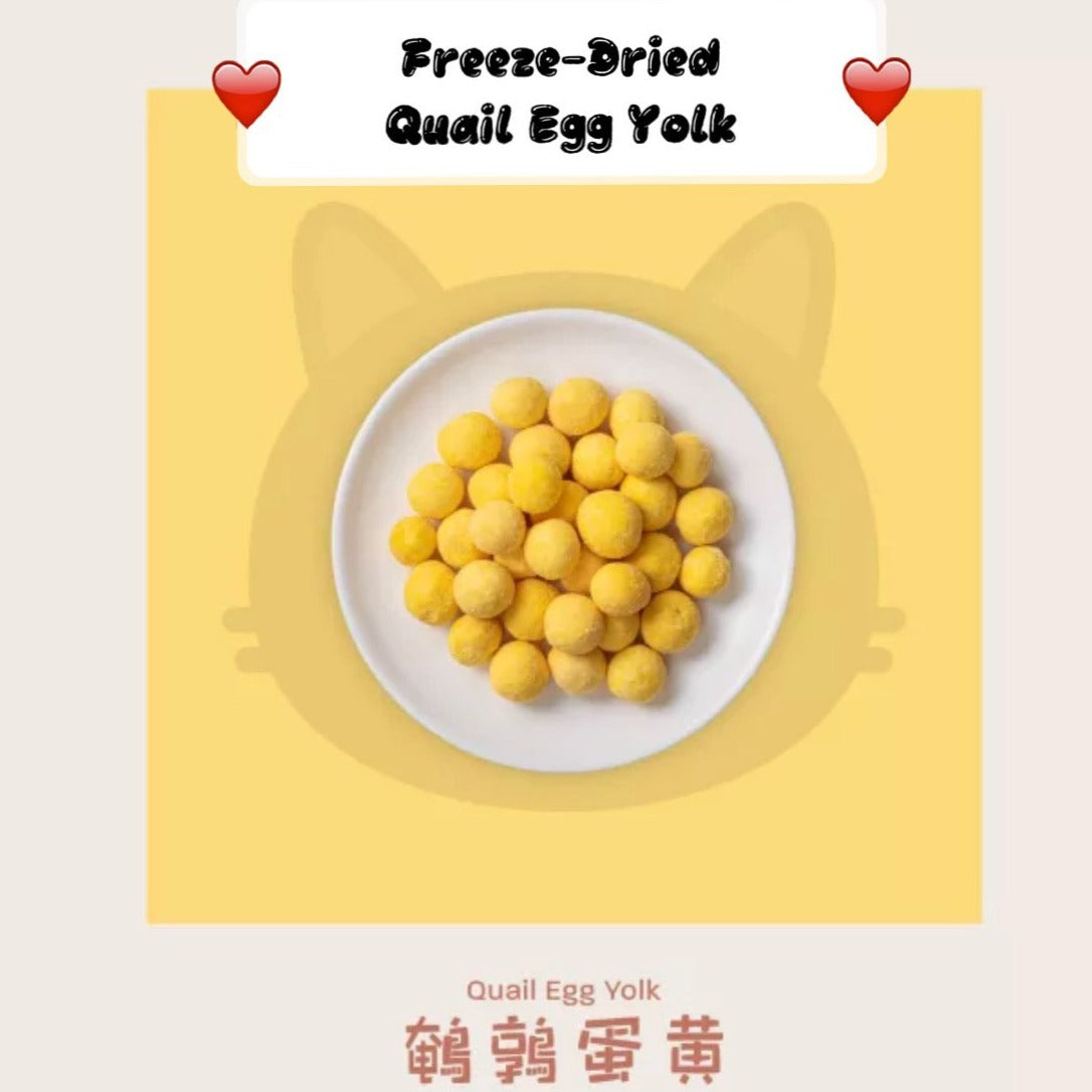 Pet Snack for Cat Freeze Dried- Quail Egg Yolk 冻干鹌鹑蛋黄