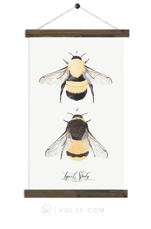 Insect Study Bumble Bee | unique wall hanging art | more options