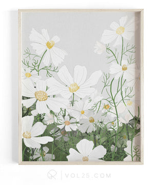 Cosmos In Bloom | Textured Cotton Canvas Art Print | VOL25