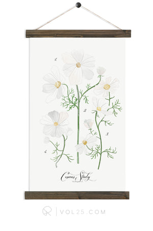 Cosmos Study | Canvas Wall hanging | more options