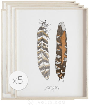 Feather Patterns Studies | Curated Art Set | 5 Textured Cotton Canvas Art Prints | VOL25