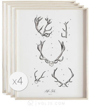 Antler Studies | Curated Art Set | 4 Textured Cotton Canvas Art Prints | VOL25