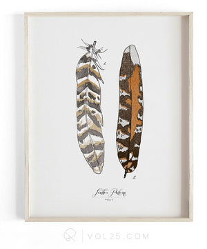 Feather Patterns Vol.1 | Scientific Textured Cotton Canvas Art Print | VOL25