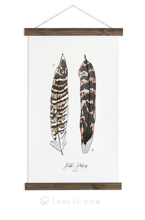 Feather Patterns Vol.2 | Scientific Canvas Wall hanging | more options VPC102 - vol25