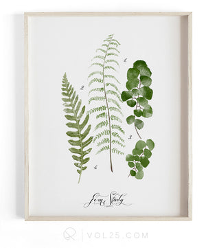 Fern Study Vol.3 | Textured Cotton Canvas Art Print, 10 sizes | VOL25