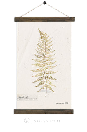 Golden Fern Study vol1 |  unique wall hanging art  | More options