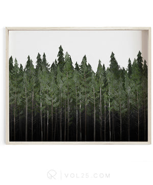 Into The Woods Landscape | Textured Cotton Canvas Art Print | VOL25