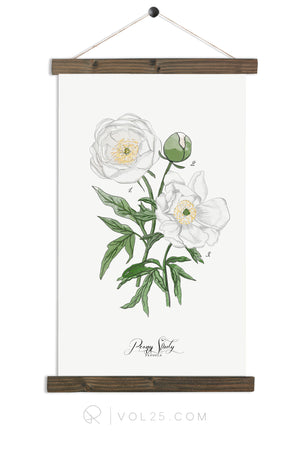 Peony Study White |  unique wall hanging art | more options