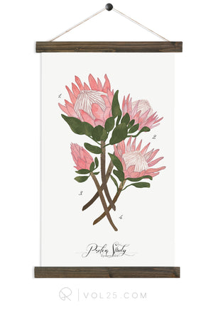 Protea Study | Canvas Wall hanging | more options