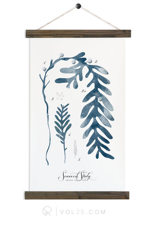 Seaweed Study Vol1 | Canvas Wall hanging | more options