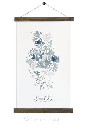 Seaweed Study Vol2 | Canvas Wall hanging | more options