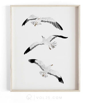 Soar | Textured Cotton Canvas Art Print, 9 sizes | VOL25