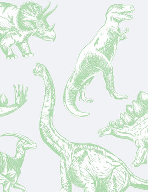 Dinosaur Decal Pack