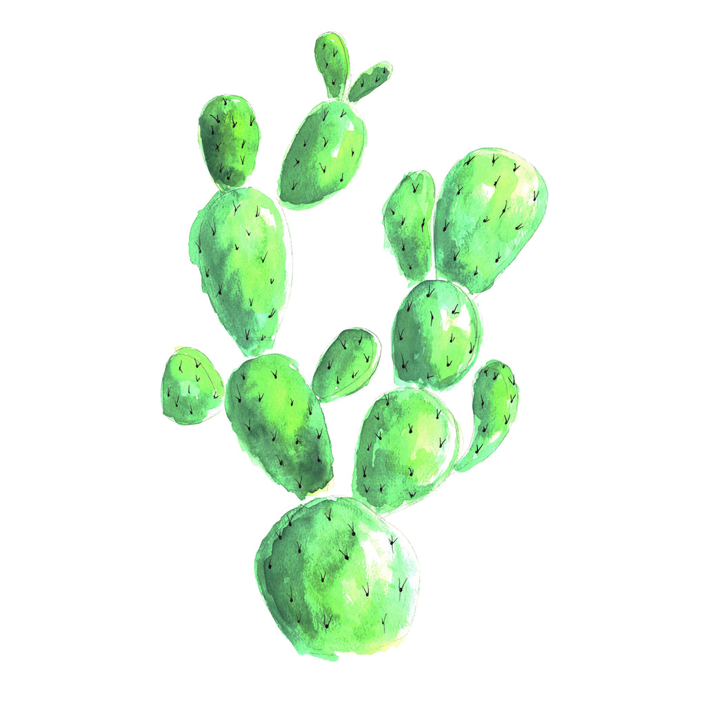 Watercolour Cactus Decal