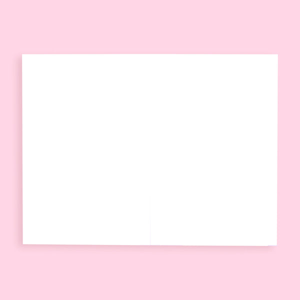 Stationery Pal Original Birthday Greeting Card - Blue Pink