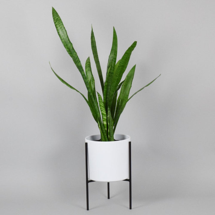 mid century modern planter plant stand with snake plant