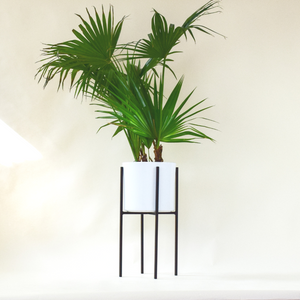 "Oliver 23"" - Plant Stands - By plantwares™"