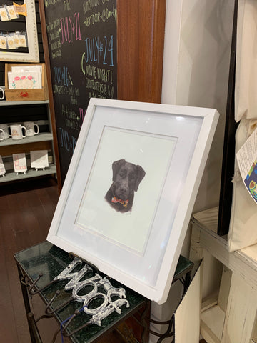 Maryland Black Lab -  8X10 (un-framed) Watercolor Print