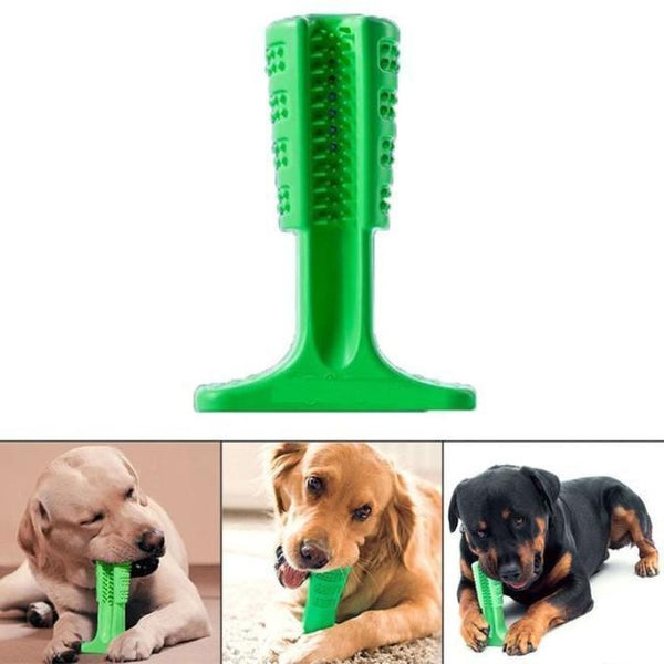 Chewing Toy for Dogs