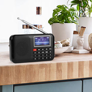 Raddy RF28 Portable Radio Review