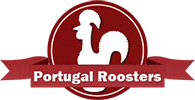 Portugal Roosters