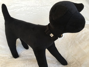 Susan Lanci Big Bow Black Collar