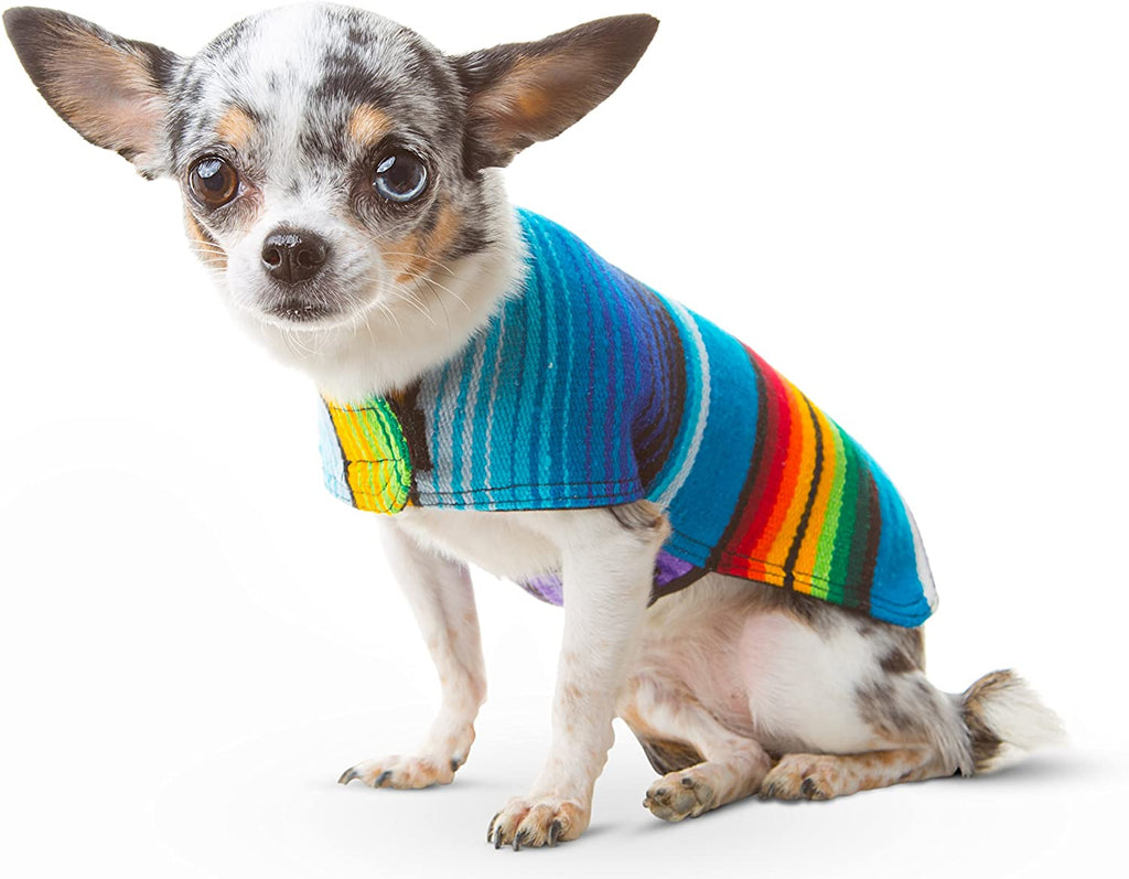 BAJA PANCHOS DOG PONCHO FROM MEXICAN SERAPE BLANKET BLUE