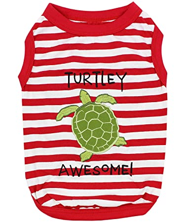 PARISIAN PET EMBROIDERED TURTLEY AWSOME! T-SHIRT