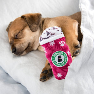 HAUTE DIGGITY DOG STARBARKS PUPPERMINT MOCHA