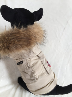 CANADA GOOSE DOG COAT WITH FUR TAN