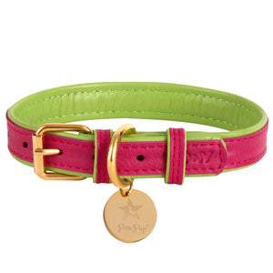 POISE PUP LEATHER COLLAR CANDY SWIRL
