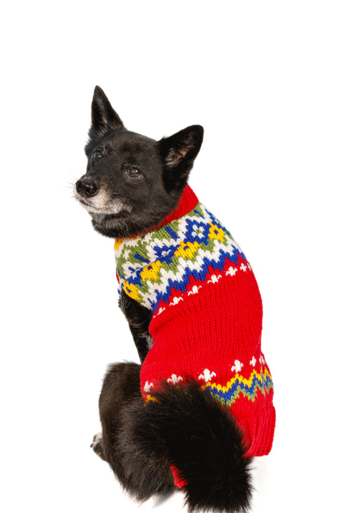 CHILLY DOG HOLIDAY FAIRISLE WOOL SWEATER