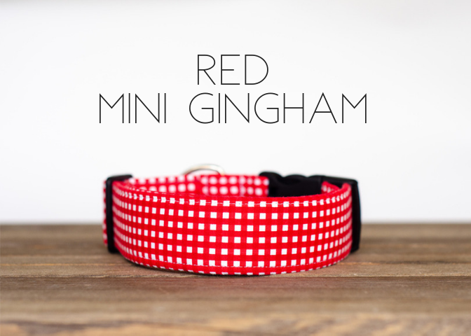 PUDDLE JUMPER COLLECTION THE RED MINI GINGAM
