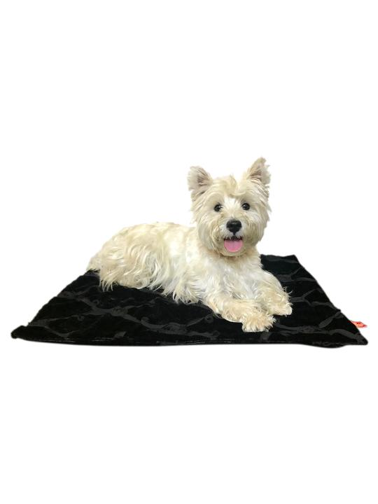 DOG SQUAD BLANKET EMBROIDERED ROSES BLACK